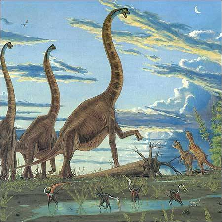 一门脚丫儿创造的科学 - 邢立达 - 邢立达的恐龙频道
