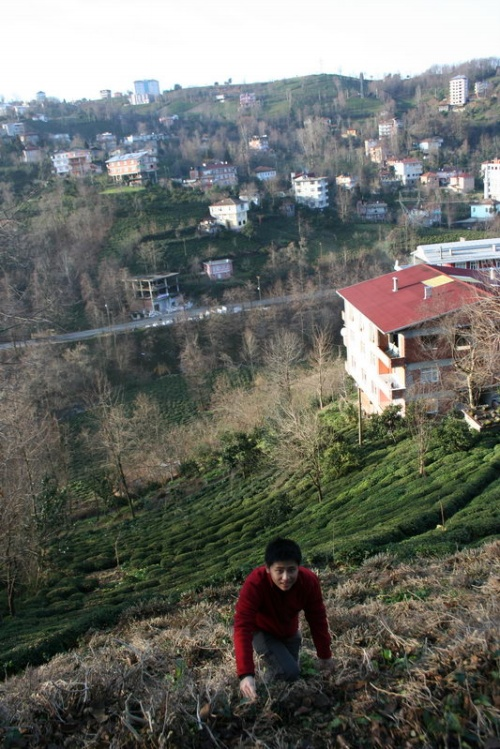 在土耳其里泽的一次远足(2009.01.19) - 索夫 - 索夫的航海日志