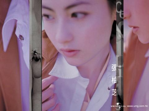 壁纸-明星-张柏芝[29张] - [AsLRy] - AS Dream
