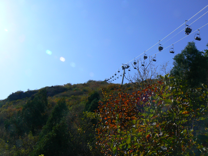 秋游香山 - Allan -              瓦尔登湖的落叶
