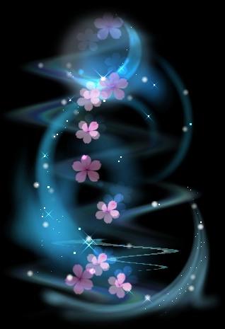 静之美(组画) - 随缘 - 相逢是缘,欢迎光临陋室,愿大家万事如意!