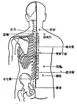 夹脊穴简介(下载) - 百花山 - 百花山的博客