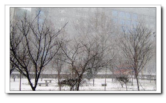 下雪了 - 坏老头 - hlt50的博客