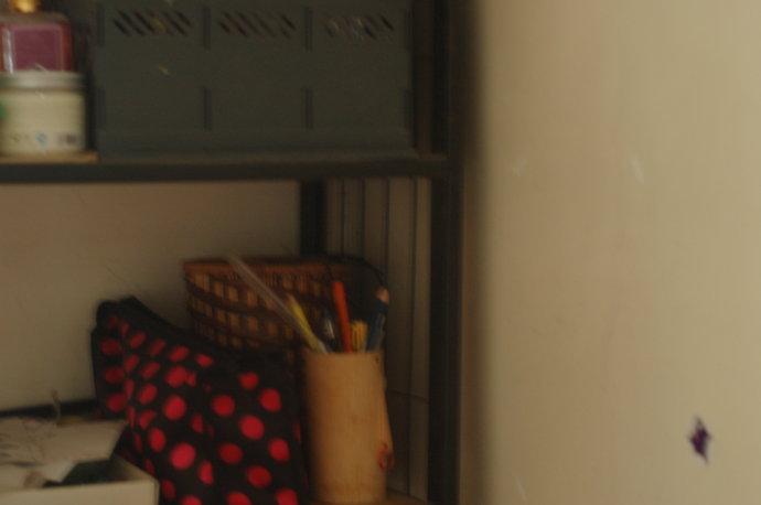 喆喆拍摄的照片,4岁女孩初试单反