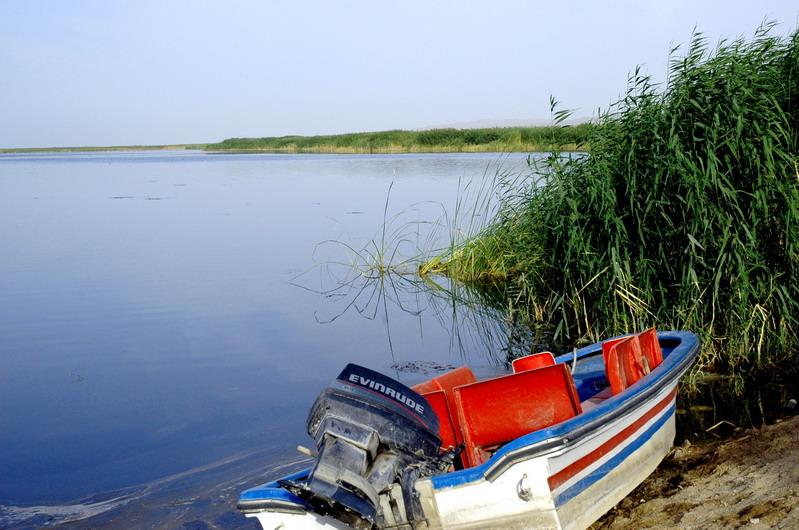 [原创]博斯腾湖和库尔勒 - 老港 - 《老港的博客》