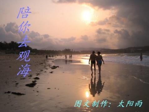 陪你去观海(音画原创) - 太阳雨 -