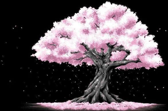 心窗            宋守文 《思维与智慧》杂志2011年11月(上)21期 - 人生漫步 - 宋守文的博客