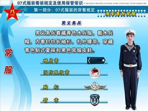 07式新军装之军衔标志 胸标 臂章 组图图片