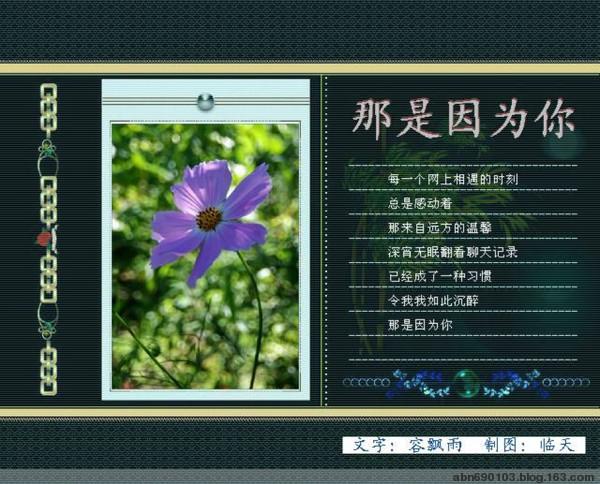 那是因为你 - Lily - 百合花园