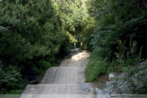 香山公园的路(2) - 刘炜大老虎 - liuwei77997的博客