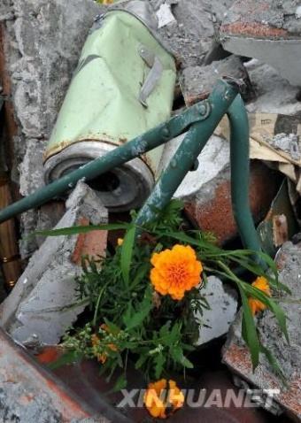 北川汶川大地震中令人感动难忘的画面(13-512大地震汇总图片) - 平衡天下 - 平衡天下
