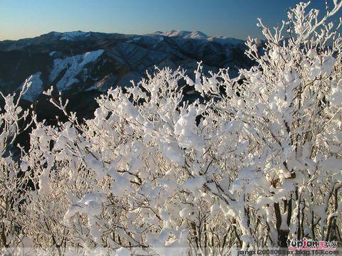 原创《雪》 - 春季晚霞 - 春季晚霞的博客向博友们学习!