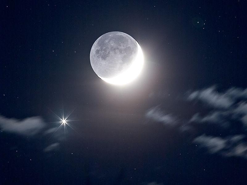 月亮和星星 - 音乐茶