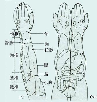 【引用】全息元 - zyysj-1 - 杨生军的博客