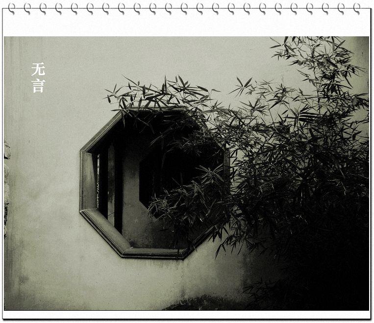 黑白的园林 - 一爪的距离 - 一爪的距离