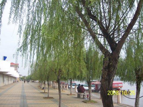 秋日安庆长江外滩即景(pp) - wzs325 - 王志顺