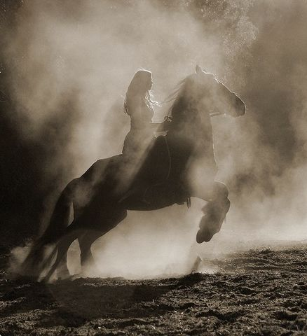 [摄影欣赏]神奇的黑与白 - 回首阑珊处 - 有空来坐坐