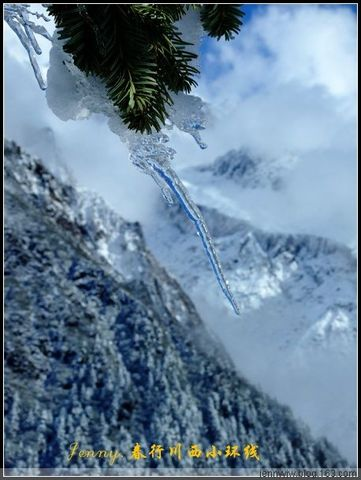 2008川西的春天.2.--冰川海螺沟 - jennyyjw - yang-jenny的旅行博客
