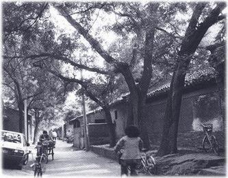在北京的胡同里遛弯 - 中华遗产 - 《中华遗产》