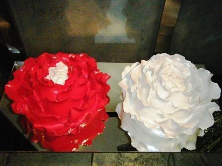 11月混日记 - 老虎闻玫瑰 - 老虎闻玫瑰的博客