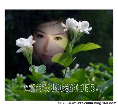 【雪花/原】贺*社会新气象*周年庆 - 雪花芙蓉 - 宠若幽静