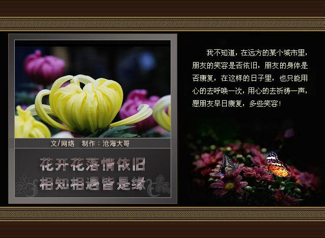 花开花落情依旧 相知相遇皆是缘〔沧海图文〕 - 沧海大哥 - .