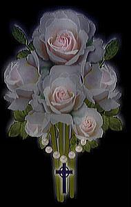 引用 百合漂亮花卉素材 - 沉醉 - 沉醉的博客