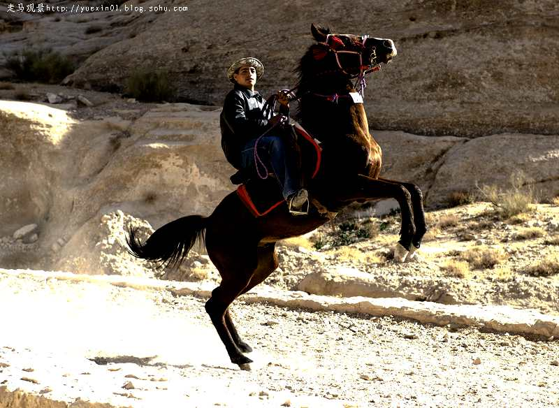 约旦神秘古城佩特拉 - 晓月 - 走马观景