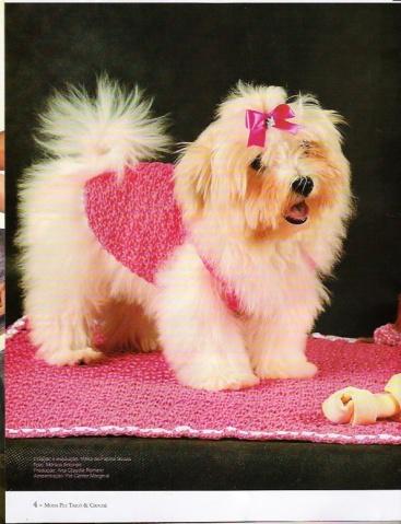 【转载】宠物狗官的行头 - 兰心格非 - 兰心格非的博客