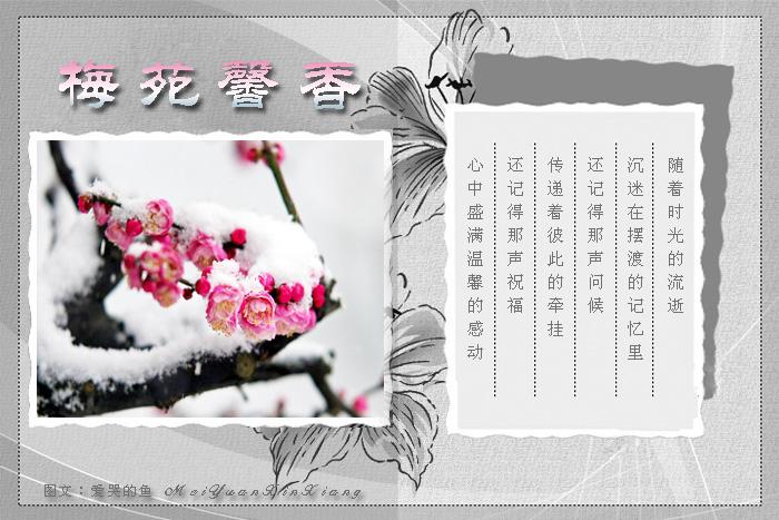 【精美图文】古韵诗词 - 梅香傲雪 - 梅 香 傲 雪