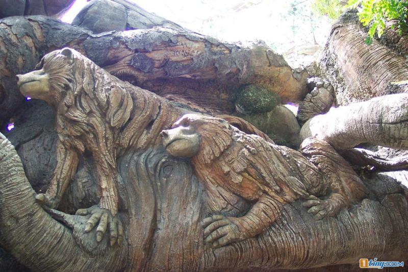 这是一棵神奇的大树。转到你空间,很灵的! - 故乡情国际标准舞专辑           - 故乡情怀
