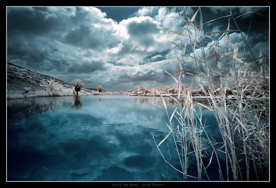 世界摄影精品 - 蓝色情人 - 蛇性人生——思味生活