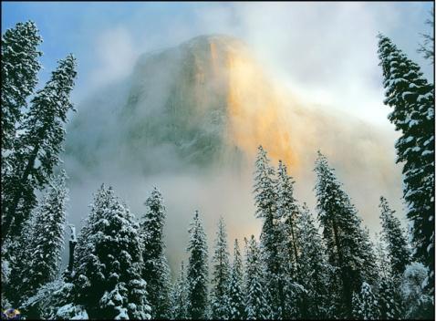 【原创】相信山顶会登上去的,坚信绿洲一定会出现的…… - 雪之舞 - 雪儿的BLOG