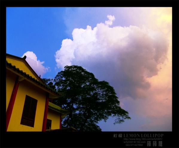 【原创】_近期拍的照片 - 柠檬棒棒糖 - 柠檬棒棒糖的田园