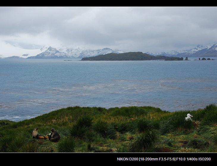 啊,南极(十) - 西樱 - 走马观景