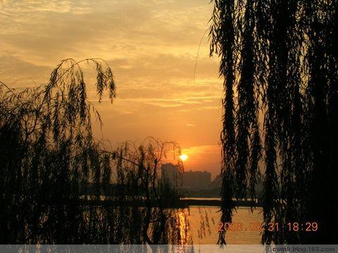 秋(夕阳)                         [原] - 梅魂 - 梅魂 欢迎你来做客。