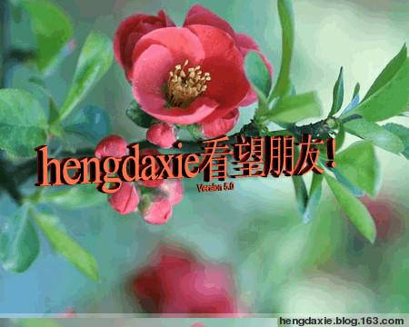 最新留言图片《代码》歌曲 - hengdaxie - 开心快乐,每一天!