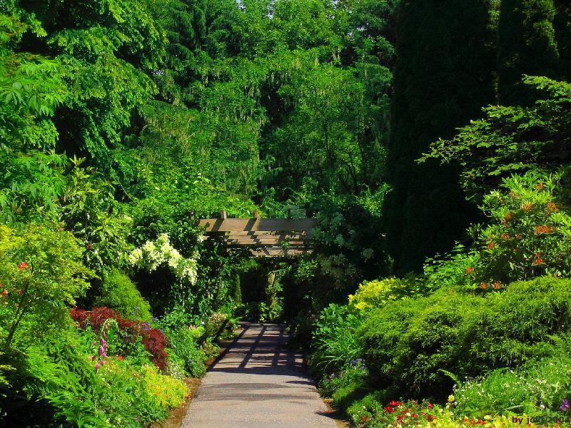 美如仙境的皇家园林 - 梧桐栖凤 - 地球村