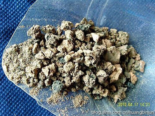 仙人球种植用土及配比  - 落霞·孤骛 - 落霞·孤骛的博客