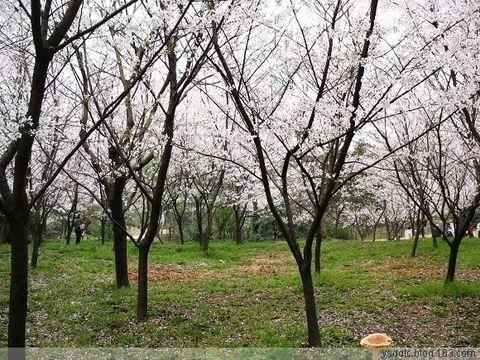 2008年3月31日 - 折叠空间 - 折叠空间