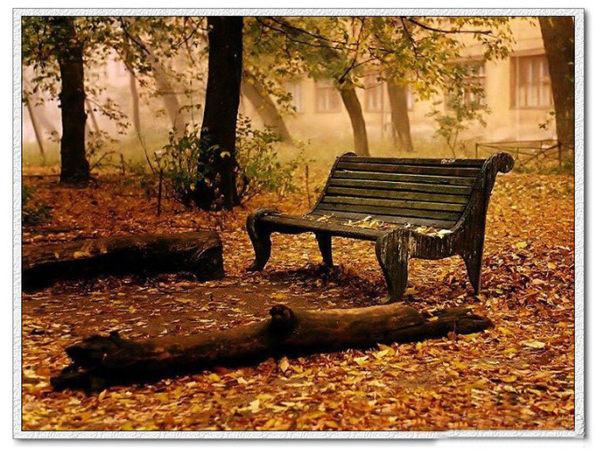 伤感的情怀,寂寞的季节 - 往昔2009 - 给心一个舞台