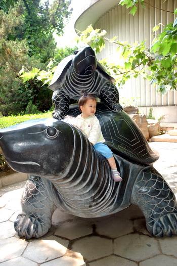 补牙后去动物园鈥斺05.19.08
