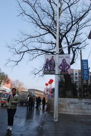 故乡是沅江 - 邓飞 - 邓飞