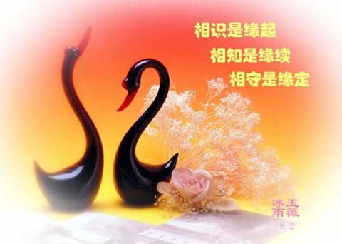 《静水原创》 《家园杯》珍惜缘份 - 静水澜语 - .