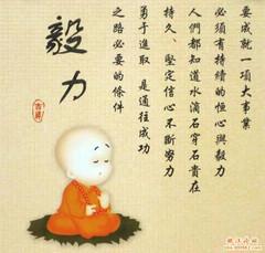 美好人生来自成功的规划 - ZSM---精彩人生 - ZSM(不经风雨 怎见彩虹?!)