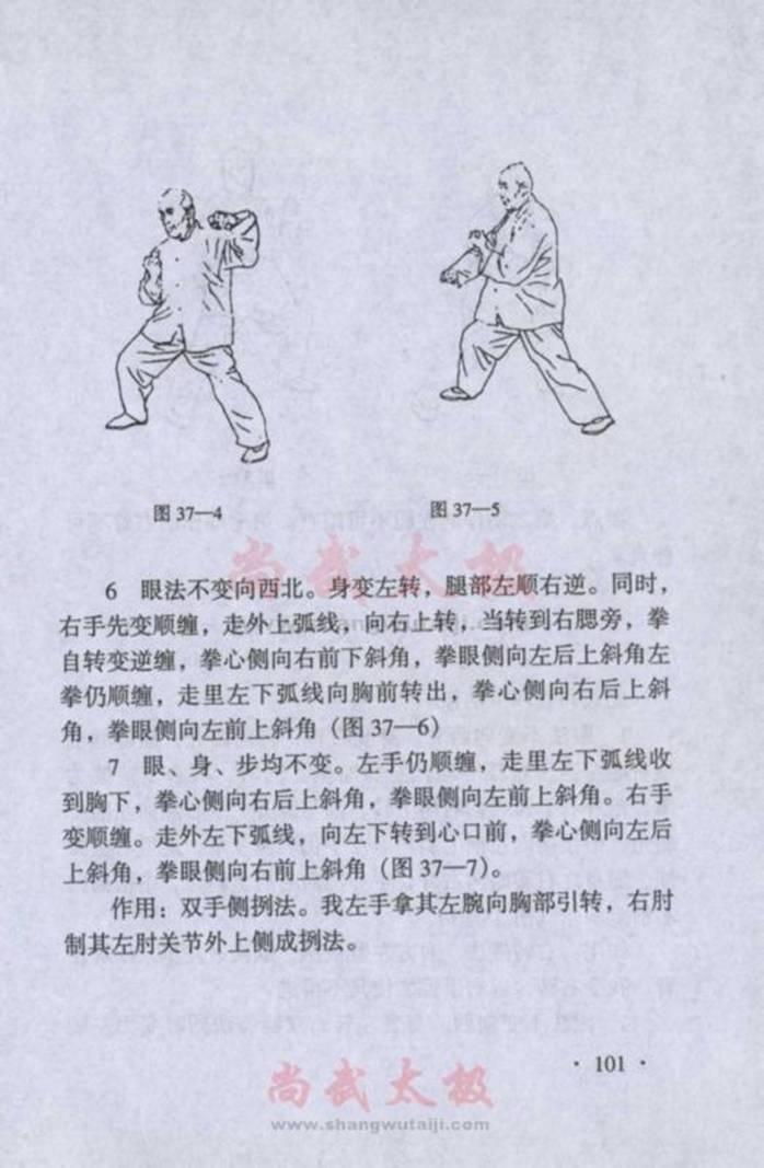 引用 陈式太极拳实用拳法 三十六式二起脚至四十式掩手红锤 - 蓝色小溪 - 蓝色小溪