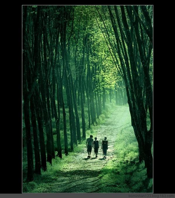 2009年1月8日 - 云游老道  - 崂山隐士的博客