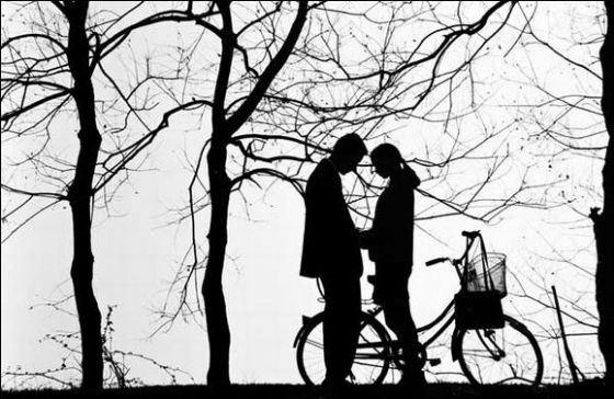 我说我爱你 - 我爱你 我想你 - 我爱你我想你