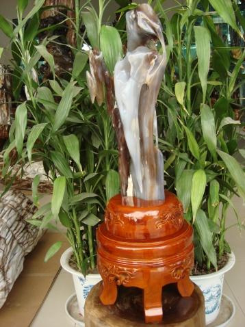 笑口常开 - 缅甸树化王-山喜 - 缅甸树化王的博客
