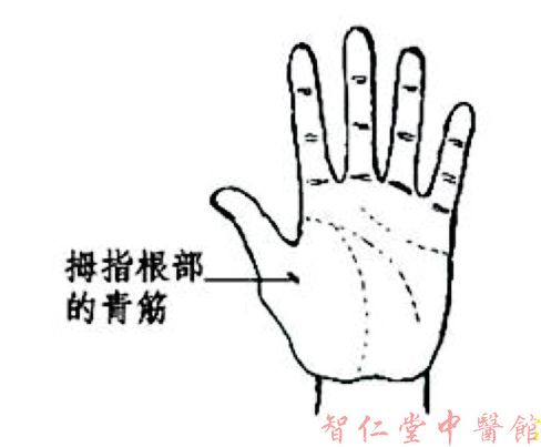 手诊精要图(自己会看病了)_天祥菩提精舍_百度空间 - 华佗 - 华佗百草堂